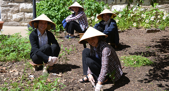 Sisters from Vietnam in Ripa. Helping out in the gardens.