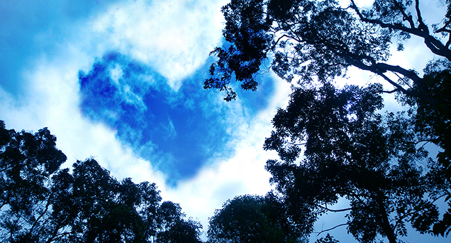 Blue heart in the clouds above trees