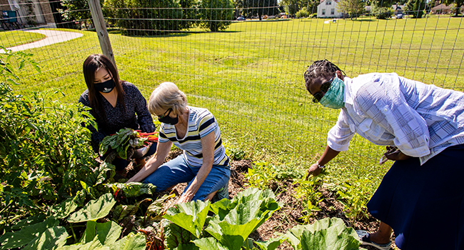 Mount Mary University in Milwaukee has a community garden that three sisters and students tend to.