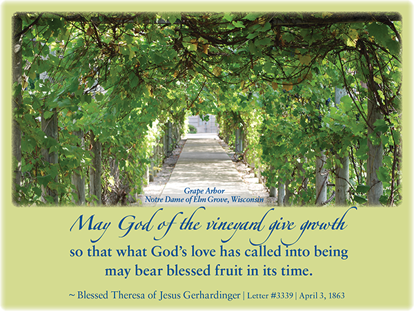 May God of the vineyard give growth so that what God's love has called into being may bear blessed fruit in its time. ~Blessed Theresa Gerhardinger | Letter #3339 | April 3, 1863