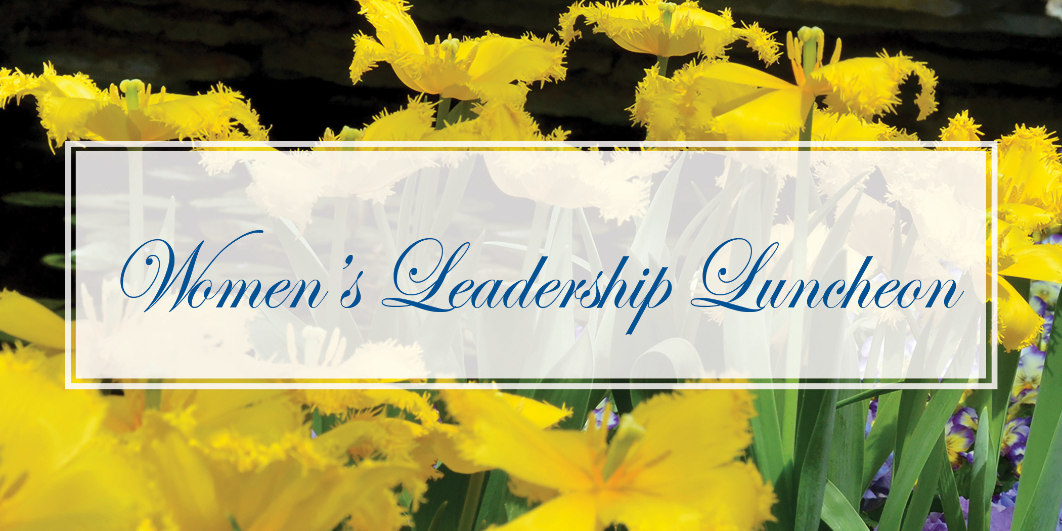 Women's Leadership Luncheon header for 2018