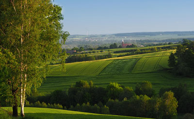 Landscape view of a field - Image from morguefile.com