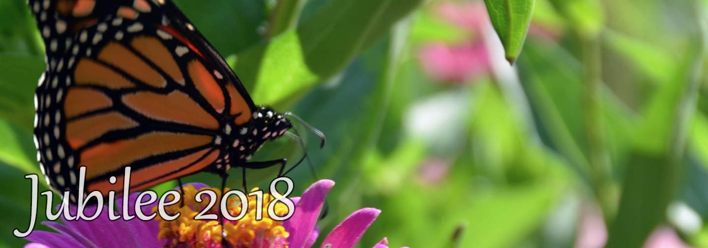 Jubilee 2018 image with butterfly on flower
