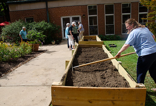 Caroline Garden. S. Jean Greenwald is racking new flower beds.
