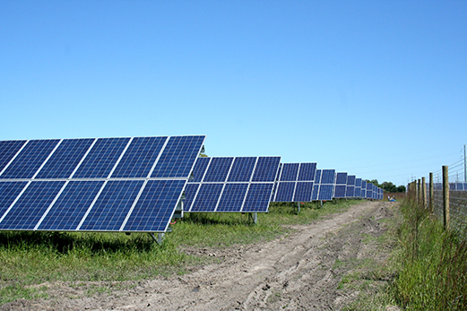 The School Sisters of Notre Dame partnered with Dwight Jelle of Best Power International to open a solar park on SSND property in September 2015. The park includes about 2,800 solar panels and was made possible with a grant from Xcel Energy.