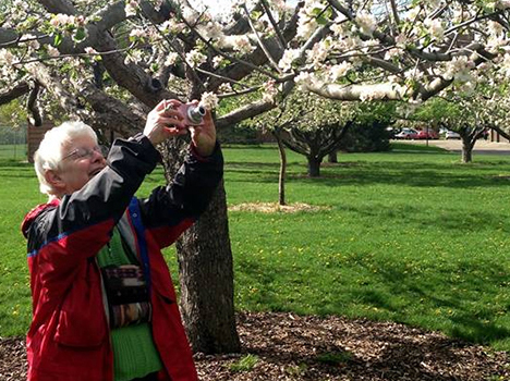 Sister Therese Ann Zanmiller cares for the new buds on a tree in spring.